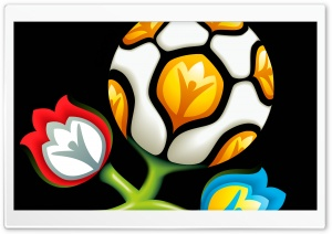 Euro 2012 HD Wide Wallpaper for Widescreen