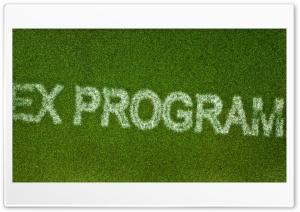 EX Programmer grass Ultra HD Wallpaper for 4K UHD Widescreen desktop, tablet & smartphone