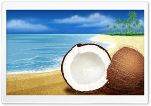 Exotic Coconut On The Beach HD Wide Wallpaper for Widescreen
