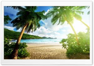 Exotic Island HD Wide Wallpaper for Widescreen