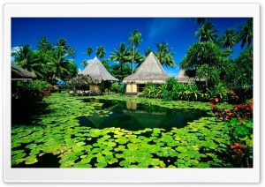 Exotic Resort HD Wide Wallpaper for Widescreen