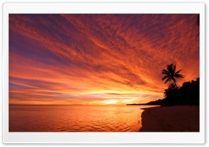 Exotic Sunset HD Wide Wallpaper for 4K UHD Widescreen desktop & smartphone