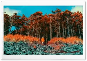 Exploring Around Infrared Photography HD Wide Wallpaper for 4K UHD Widescreen desktop & smartphone