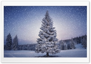Fairy Tale Winter HD Wide Wallpaper for Widescreen