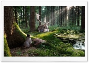 Fairytale Forest HD Wide Wallpaper for Widescreen
