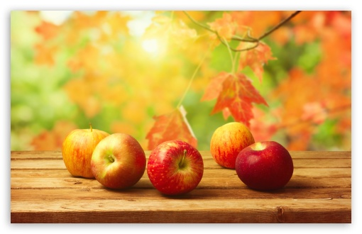 Fall Apples HD wallpaper for Wide 16:10 5:3 Widescreen WHXGA WQXGA WUXGA WXGA WGA ; HD 16:9 High Definition WQHD QWXGA 1080p 900p 720p QHD nHD ; UHD 16:9 WQHD QWXGA 1080p 900p 720p QHD nHD ; Standard 4:3 5:4 3:2 Fullscreen UXGA XGA SVGA QSXGA SXGA DVGA HVGA HQVGA devices ( Apple PowerBook G4 iPhone 4 3G 3GS iPod Touch ) ; iPad 1/2/Mini ; Mobile 4:3 5:3 3:2 16:9 5:4 - UXGA XGA SVGA WGA DVGA HVGA HQVGA devices ( Apple PowerBook G4 iPhone 4 3G 3GS iPod Touch ) WQHD QWXGA 1080p 900p 720p QHD nHD QSXGA SXGA ; Dual 16:10 5:3 16:9 4:3 5:4 WHXGA WQXGA WUXGA WXGA WGA WQHD QWXGA 1080p 900p 720p QHD nHD UXGA XGA SVGA QSXGA SXGA ;