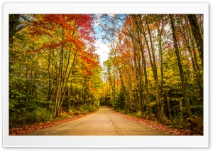 Fall, Autumn, Colors, Travel, Road, Trees, Foliage Ultra HD Wallpaper for 4K UHD Widescreen desktop, tablet & smartphone