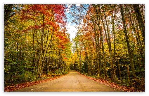 Fall, Autumn, Colors, Travel, Road, Trees, Foliage UltraHD Wallpaper for Wide 16:10 5:3 Widescreen WHXGA WQXGA WUXGA WXGA WGA ; UltraWide 21:9 24:10 ; 8K UHD TV 16:9 Ultra High Definition 2160p 1440p 1080p 900p 720p ; UHD 16:9 2160p 1440p 1080p 900p 720p ; Standard 4:3 5:4 3:2 Fullscreen UXGA XGA SVGA QSXGA SXGA DVGA HVGA HQVGA ( Apple PowerBook G4 iPhone 4 3G 3GS iPod Touch ) ; Smartphone 16:9 3:2 5:3 2160p 1440p 1080p 900p 720p DVGA HVGA HQVGA ( Apple PowerBook G4 iPhone 4 3G 3GS iPod Touch ) WGA ; Tablet 1:1 ; iPad 1/2/Mini ; Mobile 4:3 5:3 3:2 16:9 5:4 - UXGA XGA SVGA WGA DVGA HVGA HQVGA ( Apple PowerBook G4 iPhone 4 3G 3GS iPod Touch ) 2160p 1440p 1080p 900p 720p QSXGA SXGA ;