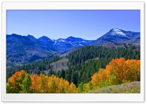 Fall Colors In The Sierra HD Wide Wallpaper for 4K UHD Widescreen desktop & smartphone