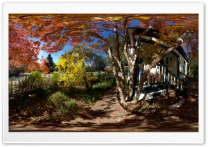 Fall Colors, Ukiah HD Wide Wallpaper for Widescreen