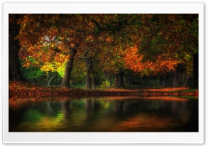 Fall Flood HD Wide Wallpaper for 4K UHD Widescreen desktop & smartphone
