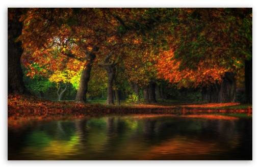 Fall Flood ❤ 4K UHD Wallpaper for Wide 16:10 5:3 Widescreen WHXGA WQXGA WUXGA WXGA WGA ; 4K UHD 16:9 Ultra High Definition 2160p 1440p 1080p 900p 720p ; Standard 4:3 5:4 3:2 Fullscreen UXGA XGA SVGA QSXGA SXGA DVGA HVGA HQVGA ( Apple PowerBook G4 iPhone 4 3G 3GS iPod Touch ) ; Smartphone 5:3 WGA ; Tablet 1:1 ; iPad 1/2/Mini ; Mobile 4:3 5:3 3:2 16:9 5:4 - UXGA XGA SVGA WGA DVGA HVGA HQVGA ( Apple PowerBook G4 iPhone 4 3G 3GS iPod Touch ) 2160p 1440p 1080p 900p 720p QSXGA SXGA ; Dual 16:10 5:3 16:9 4:3 5:4 WHXGA WQXGA WUXGA WXGA WGA 2160p 1440p 1080p 900p 720p UXGA XGA SVGA QSXGA SXGA ;