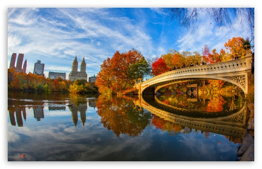 Download Fall Foliage in Central Park New York City HD Wallpaper