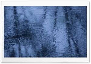 Fall Rain Reflection HD Wide Wallpaper for Widescreen