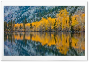 Fall Reflection, Silver Lake, California HD Wide Wallpaper for Widescreen