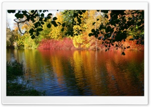 Fall Reflexion HD Wide Wallpaper for Widescreen