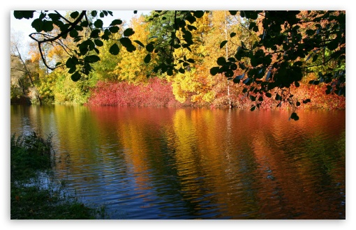 Fall Reflexion HD wallpaper for Wide 16:10 5:3 Widescreen WHXGA WQXGA WUXGA WXGA WGA ; HD 16:9 High Definition WQHD QWXGA 1080p 900p 720p QHD nHD ; Standard 4:3 5:4 3:2 Fullscreen UXGA XGA SVGA QSXGA SXGA DVGA HVGA HQVGA devices ( Apple PowerBook G4 iPhone 4 3G 3GS iPod Touch ) ; Tablet 1:1 ; iPad 1/2/Mini ; Mobile 4:3 5:3 3:2 16:9 5:4 - UXGA XGA SVGA WGA DVGA HVGA HQVGA devices ( Apple PowerBook G4 iPhone 4 3G 3GS iPod Touch ) WQHD QWXGA 1080p 900p 720p QHD nHD QSXGA SXGA ; Dual 5:4 QSXGA SXGA ;