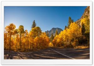 Fall Scenery HD Wide Wallpaper for Widescreen