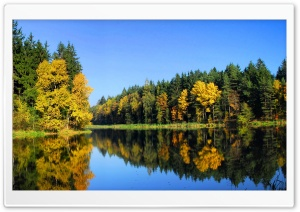 Fall Trees Reflection HD Wide Wallpaper for Widescreen