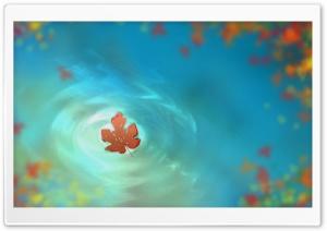Fallen Autumn Leaves Ultra HD Wallpaper for 4K UHD Widescreen desktop, tablet & smartphone