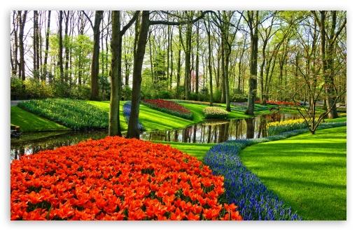 Famous Tulip Garden in Holland UltraHD Wallpaper for Wide 16:10 5:3 Widescreen WHXGA WQXGA WUXGA WXGA WGA ; UltraWide 21:9 24:10 ; 8K UHD TV 16:9 Ultra High Definition 2160p 1440p 1080p 900p 720p ; UHD 16:9 2160p 1440p 1080p 900p 720p ; Standard 4:3 5:4 3:2 Fullscreen UXGA XGA SVGA QSXGA SXGA DVGA HVGA HQVGA ( Apple PowerBook G4 iPhone 4 3G 3GS iPod Touch ) ; Smartphone 16:9 3:2 5:3 2160p 1440p 1080p 900p 720p DVGA HVGA HQVGA ( Apple PowerBook G4 iPhone 4 3G 3GS iPod Touch ) WGA ; Tablet 1:1 ; iPad 1/2/Mini ; Mobile 4:3 5:3 3:2 16:9 5:4 - UXGA XGA SVGA WGA DVGA HVGA HQVGA ( Apple PowerBook G4 iPhone 4 3G 3GS iPod Touch ) 2160p 1440p 1080p 900p 720p QSXGA SXGA ; Dual 5:4 3:2 QSXGA SXGA DVGA HVGA HQVGA ( Apple PowerBook G4 iPhone 4 3G 3GS iPod Touch ) ;