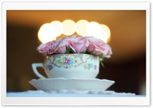 Fancy Tea Cup HD Wide Wallpaper for Widescreen