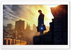 Fantastic Beasts and Where to Find Them HD Wide Wallpaper for Widescreen