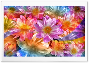 Fantasy Flowers HD Wide Wallpaper for 4K UHD Widescreen desktop & smartphone