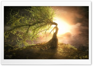 Fantasy Willow HD Wide Wallpaper for 4K UHD Widescreen desktop & smartphone