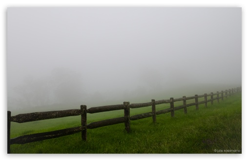 Farm Fence   Misty Day HD wallpaper for Wide 16:10 5:3 Widescreen WHXGA WQXGA WUXGA WXGA WGA ; HD 16:9 High Definition WQHD QWXGA 1080p 900p 720p QHD nHD ; Standard 4:3 5:4 3:2 Fullscreen UXGA XGA SVGA QSXGA SXGA DVGA HVGA HQVGA devices ( Apple PowerBook G4 iPhone 4 3G 3GS iPod Touch ) ; Tablet 1:1 ; iPad 1/2/Mini ; Mobile 4:3 5:3 3:2 16:9 5:4 - UXGA XGA SVGA WGA DVGA HVGA HQVGA devices ( Apple PowerBook G4 iPhone 4 3G 3GS iPod Touch ) WQHD QWXGA 1080p 900p 720p QHD nHD QSXGA SXGA ; Dual 16:10 5:3 16:9 4:3 5:4 WHXGA WQXGA WUXGA WXGA WGA WQHD QWXGA 1080p 900p 720p QHD nHD UXGA XGA SVGA QSXGA SXGA ;