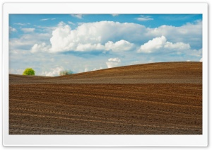Farm Field HD Wide Wallpaper for Widescreen