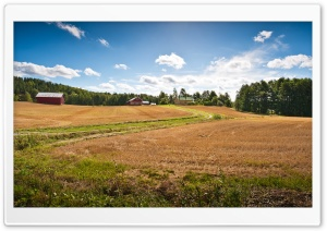 Farm Fields HD Wide Wallpaper for Widescreen