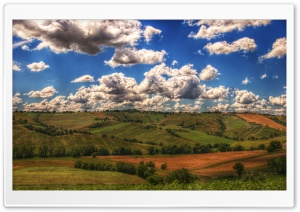 Farmland HD Wide Wallpaper for Widescreen