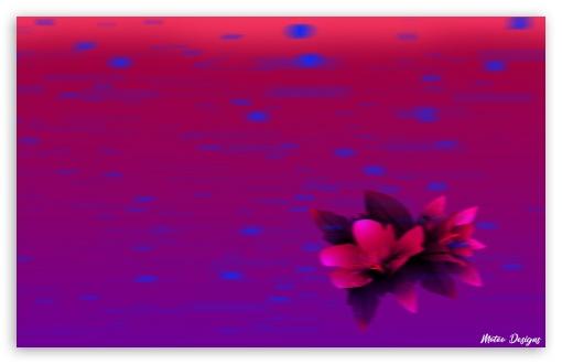 Fast Tropical Flower 4k Hd Desktop Wallpaper For 4k Ultra Hd Tv