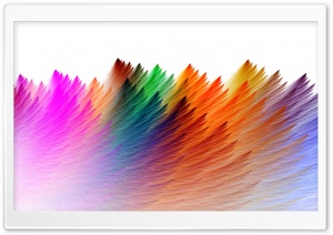 Feathers HD Wide Wallpaper for Widescreen