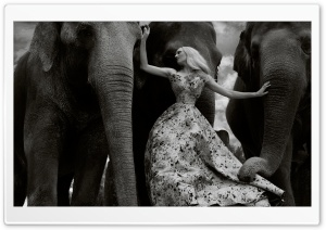 Female Model, Elephants Animals, Black and White HD Wide Wallpaper for 4K UHD Widescreen desktop & smartphone