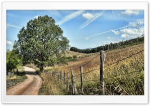 Fence Along A Country Road HD Wide Wallpaper for Widescreen