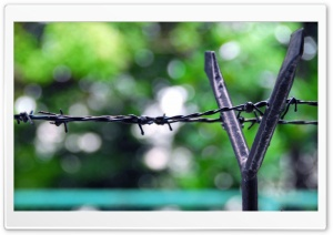 Fence Barb Wire HD Wide Wallpaper for Widescreen