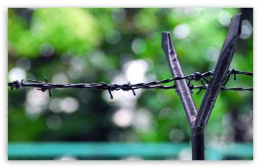 Fence Barb Wire HD wallpaper for Standard 4:3 5:4 Fullscreen UXGA XGA SVGA QSXGA SXGA ; Wide 16:10 5:3 Widescreen WHXGA WQXGA WUXGA WXGA WGA ; HD 16:9 High Definition WQHD QWXGA 1080p 900p 720p QHD nHD ; Other 3:2 DVGA HVGA HQVGA devices ( Apple PowerBook G4 iPhone 4 3G 3GS iPod Touch ) ; Mobile VGA WVGA iPhone iPad PSP Phone - VGA QVGA Smartphone ( PocketPC GPS iPod Zune BlackBerry HTC Samsung LG Nokia Eten Asus ) WVGA WQVGA Smartphone ( HTC Samsung Sony Ericsson LG Vertu MIO ) HVGA Smartphone ( Apple iPhone iPod BlackBerry HTC Samsung Nokia ) Sony PSP Zune HD Zen ; Tablet 2 Android ; Dual 4:3 5:4 UXGA XGA SVGA QSXGA SXGA ;