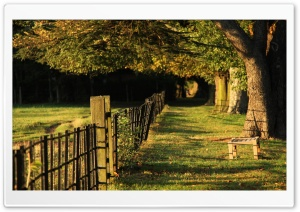 Fence, Summer HD Wide Wallpaper for Widescreen