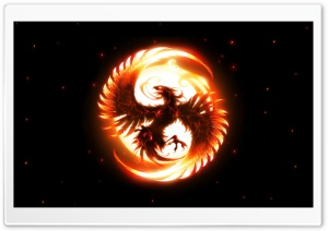 Fenix Bird HD Wide Wallpaper for Widescreen