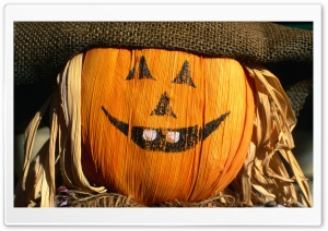 Festive Scarecrow HD Wide Wallpaper for Widescreen