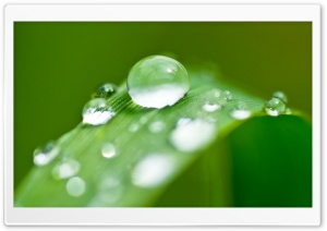 Few Drops Of Water 12 HD Wide Wallpaper for Widescreen