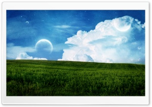 Field HD Wide Wallpaper for Widescreen