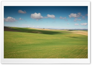 Field Landscape HD Wide Wallpaper for Widescreen
