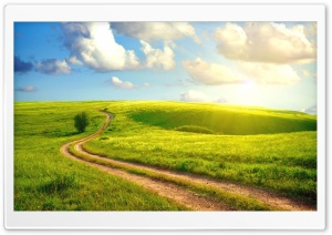 Field Path HD Wide Wallpaper for Widescreen