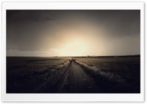 Field Road HD Wide Wallpaper for Widescreen