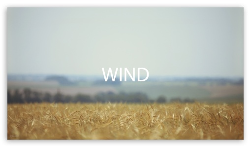 Field Wind HD wallpaper for HD 16:9 High Definition WQHD QWXGA 1080p 900p 720p QHD nHD ; Tablet 1:1 ; iPad 1/2/Mini ; Mobile 4:3 5:3 3:2 16:9 - UXGA XGA SVGA WGA DVGA HVGA HQVGA devices ( Apple PowerBook G4 iPhone 4 3G 3GS iPod Touch ) WQHD QWXGA 1080p 900p 720p QHD nHD ; Dual 4:3 5:4 UXGA XGA SVGA QSXGA SXGA ;