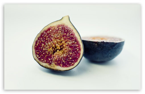 Figs HD wallpaper for Wide 16:10 5:3 Widescreen WHXGA WQXGA WUXGA WXGA WGA ; HD 16:9 High Definition WQHD QWXGA 1080p 900p 720p QHD nHD ; UHD 16:9 WQHD QWXGA 1080p 900p 720p QHD nHD ; Standard 4:3 5:4 3:2 Fullscreen UXGA XGA SVGA QSXGA SXGA DVGA HVGA HQVGA devices ( Apple PowerBook G4 iPhone 4 3G 3GS iPod Touch ) ; Tablet 1:1 ; iPad 1/2/Mini ; Mobile 4:3 5:3 3:2 16:9 5:4 - UXGA XGA SVGA WGA DVGA HVGA HQVGA devices ( Apple PowerBook G4 iPhone 4 3G 3GS iPod Touch ) WQHD QWXGA 1080p 900p 720p QHD nHD QSXGA SXGA ;