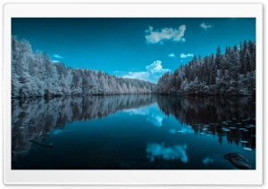 Finland Forest Lake HD Wide Wallpaper for Widescreen